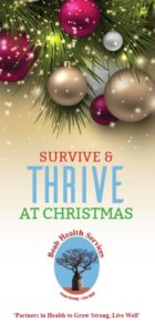 survive-and-thrive-at-christmas-cover-pic